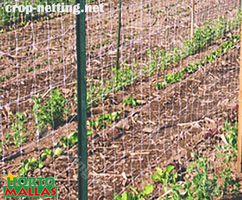 hortomallas for tutoring of crops with stakes wood steel