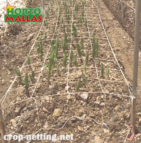 crop netting help to the good tutoring for your crops