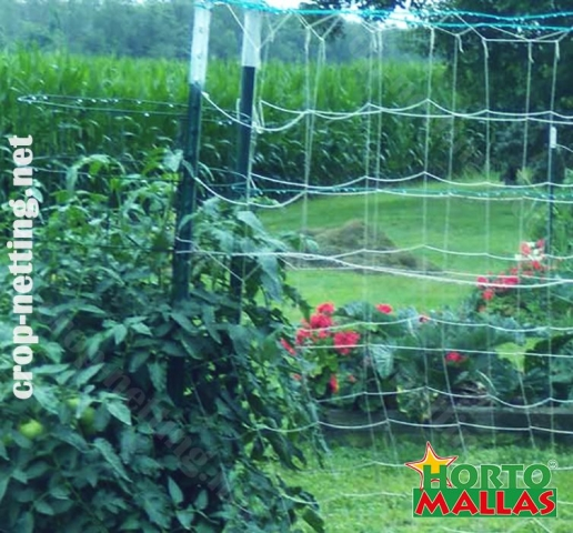 vertical netting provide a good enviorment for the growth of your crops